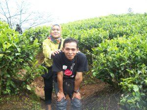 Berdua di Kebun teh