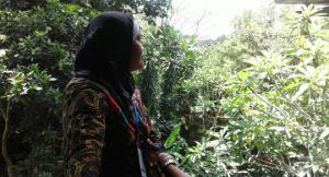 Truntum Padi Batik Jogja